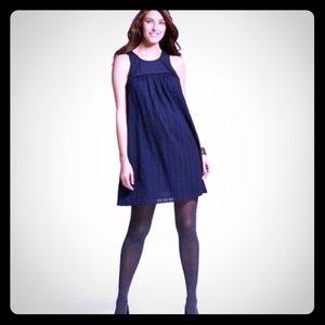 Liz Lange Blue Maternity Dress